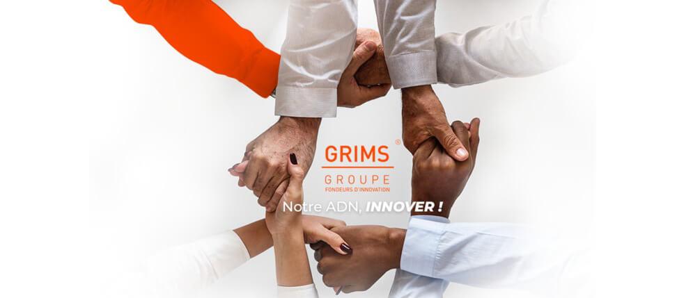 Transdisciplinarité́ Groupe Grims