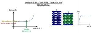 Analyse macroscopique de la compression d'un bloc de mousse